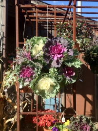 cabbage and kale wreath